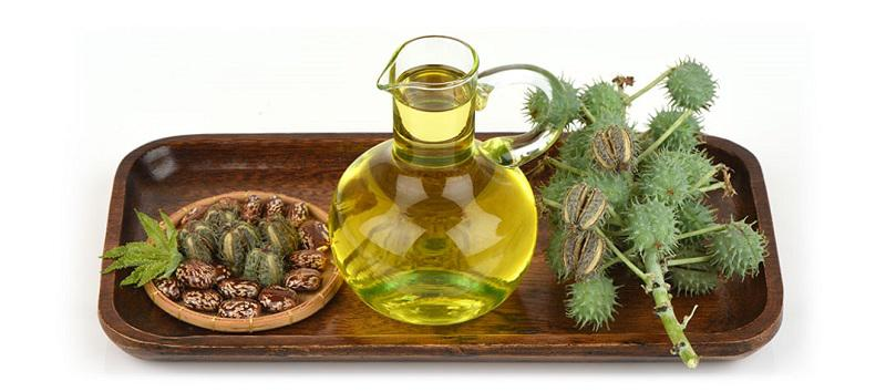 Castor Oil And Derivatives Market SWOT Analysis by Key Players Insights  from 2020-2025 | Hokoku, Itoh Oil Chemicals, Taj Agro Products – akshay blog